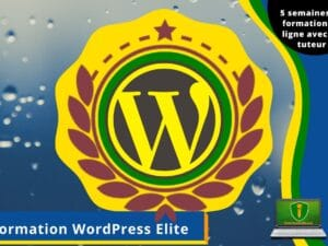 Formation_WP_Elite-1