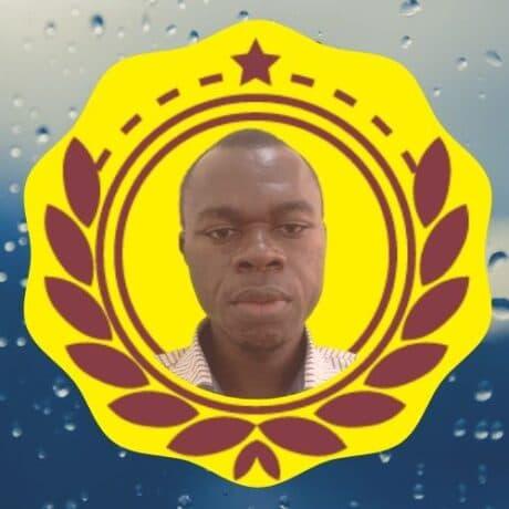 Madi ZONGO - Formateur Principal